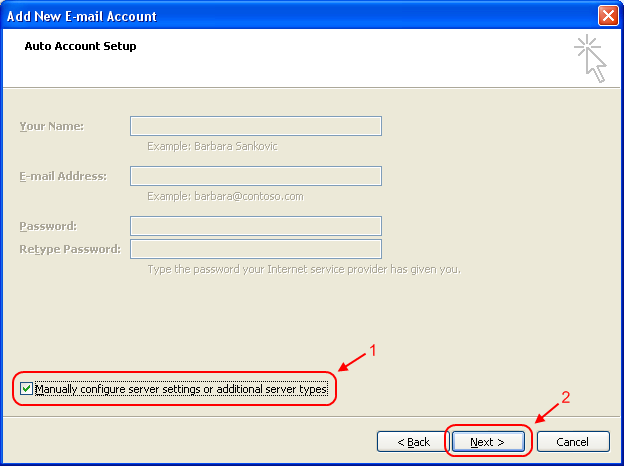 Tick 'Manually configure server settings or additional server types'